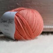 DBDelphi55011